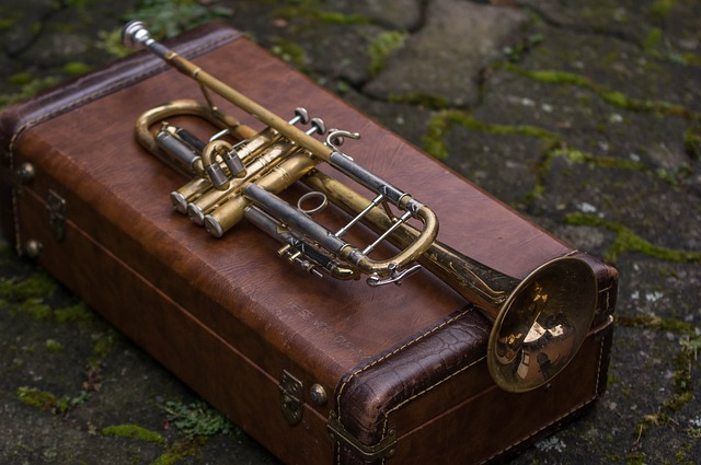 Top 5 Best Intermediate Trumpets That Help You Level Up Your Skills