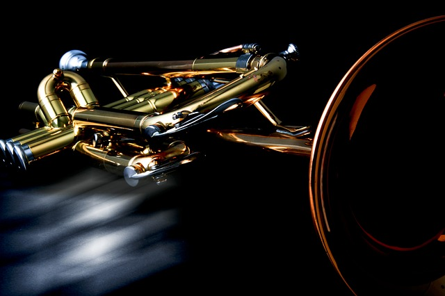 13 Best Trumpet Brands Has Already Resonated In The Market